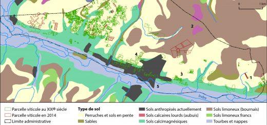 Figure 7. Sols et localisation de la vigne à Azay-le-Rideau au XIXe et XXIe siècle.