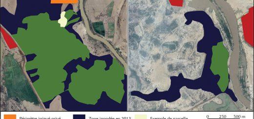 Figure 1. Zones inondées et cultivées en décrue suite à la crue de 2013 dans les cuvettes de Donaye et Nabadji. L. Bruckmann, 2016.